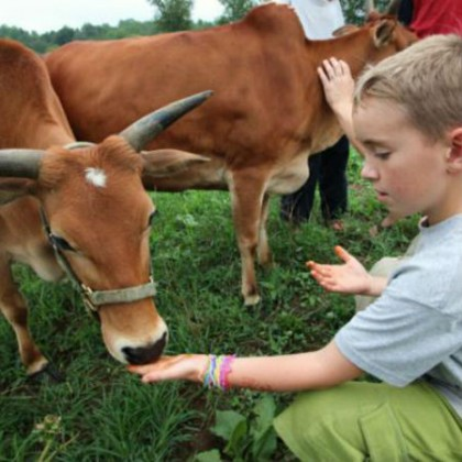 Farm community
